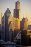 Skyscrapers at Sunrise, Chicago, Illinois Stock Photo