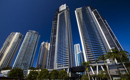 Skyscrapers of Surfers Paradise Royalty Free Stock Photo