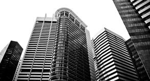 Skyscrapers, typical urban cityscape. Skyscrapers in black and white, typical urban cityscape Royalty Free Stock Photography