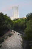 Skyskrapa i i stadens centrum Austin Arkivbilder