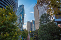 Skyskrapor av Shinjuku, Tokyo, Japan Fotografering för Bildbyråer