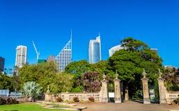 Skyskrapor av Sydney som ses från kunglig botanisk trädgård Arkivbild