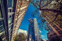 Skyskrapor i i stadens centrum San Francisco Royaltyfri Bild