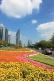 Skyskrapor i Shenzhen, Kina Royaltyfria Bilder