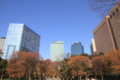 Skyskrapor i Shinjuku, Tokyo Royaltyfria Bilder