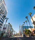 Skyskrapor och palmträd i Beverly Hills Arkivbild