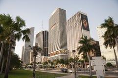 Skyskrapor som är i stadens centrum i Miami Royaltyfri Bild