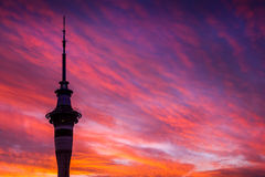 Skytower de Auckland - por do sol Fotografia de Stock