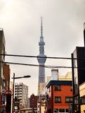 Skytree and Cloud royalty free stock images