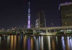 Skytree di Tokyo alla notte Fotografie Stock Libere da Diritti