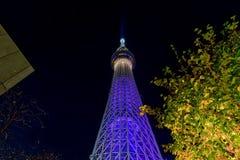 skytree tokyo Arkivbild