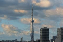 Skytree tower landmark dominating Tokyo skyline. Asian cityscape. Skytree tower dominating Tokyo skyline at sunset. Futuristic architecture in modern urban stock photography