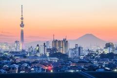 Skytree van Tokyo en bergfuji Royalty-vrije Stock Foto's