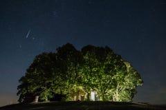 Skyttestjärna över träd royaltyfria bilder