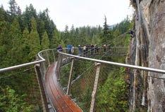 Skywalk über Wald Lizenzfreie Stockfotografie
