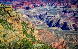 skywalk оправы каньона взгляд грандиозного близкого южный Стоковое Изображение