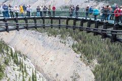Skywalk i den kanadensiska Rocky Mountains Arkivbild