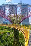 Gardens by the Bay. Skywalk in between `trees` at the Supertree Grove at Gardens by the Bay in downtown Singapore with the Marina Bay Sands hotel in the Royalty Free Stock Image