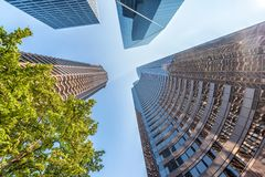 Skyward sikt av i stadens centrum skyskrapor, Seattle Arkivbilder