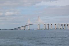 skyway的桥梁 免版税库存图片