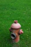 släck gräsgreen Royaltyfria Bilder
