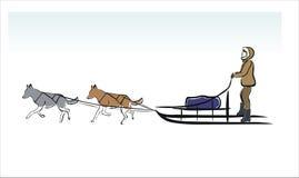 Slädehundkapplöpning Arkivbild