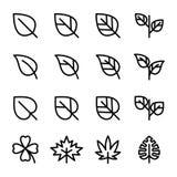 Släkta vektorsymboler för blad Arkivbild