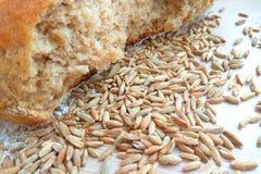 Släntra av nytt bakat vete- och rågbröd med korn på trätabellbakgrund royaltyfria bilder