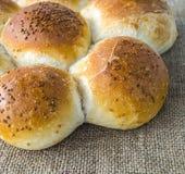 Släntra brödvariationer, olika typer av bröd på trägolv Arkivbild