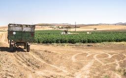 Släp av en traktor i fältet royaltyfri foto
