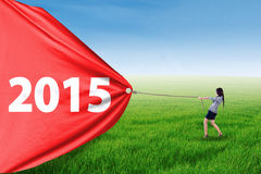 Släpande nummer 2015 för entreprenör i äng Arkivfoton