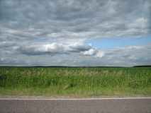 Slät kant av stenlade vägar i ett rent grönt fält i bygden royaltyfri foto