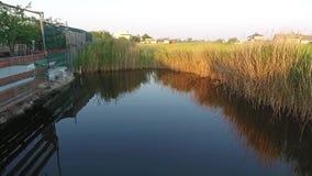Slät rörelse över vattenyttersidan av en liten sjö stock video