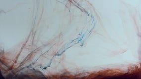 Slät rörelse av blandad röd och blå målarfärg på en vit bakgrund