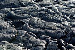 Slätt och att bölja yttersida av djupfryst pahoehoelava Djupfryst lava som in rynkas gobeläng-som veck och rullar som liknar det  Fotografering för Bildbyråer