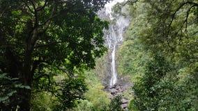 Slätt panorera skott av den enorma och höga vattenfallet långt borta lager videofilmer