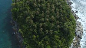 _ Slätt se upp surret som skjutas av över huvudet palmträd i den lilla Ko Pu-öde ö i Phuket, Thailand lager videofilmer