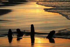 Slå in därefter vågorna på solnedgången Arkivbild