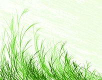 slående gräs Royaltyfri Foto