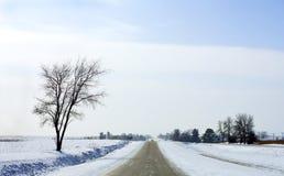 slående snow Arkivfoto