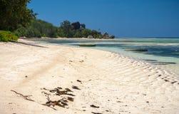Slående tropisk strand i Seychellerna Arkivfoto