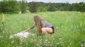 Slår ler den slanka kvinnan för barn den stora vita liggande hunden och i ett fält med många små vita blommor, i sommardag stock video