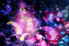 slår ut lila magi Fotografering för Bildbyråer