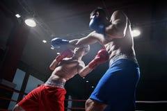 Slåss i boxningsring Royaltyfria Bilder