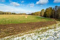 Slåtter på fältet Royaltyfri Foto