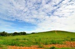 Slösa skyen, gräsplan sätter in Royaltyfri Bild