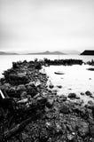 Slösat något stoppar på kustlinjen Royaltyfri Bild