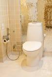 slät toalett Royaltyfri Foto