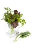 Sla in een vaas Stock Foto