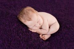 Slaap pasgeboren babymeisje op de violette achtergrond royalty-vrije stock fotografie